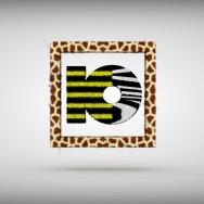 ko_dynamic_branding_06